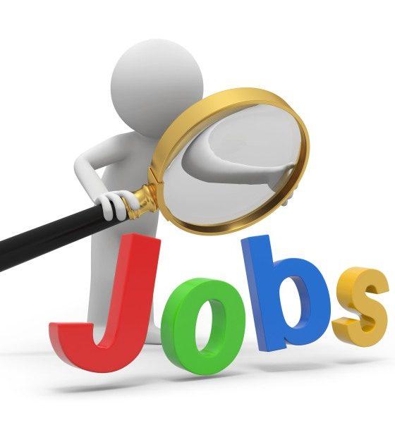 munkalehetőségek