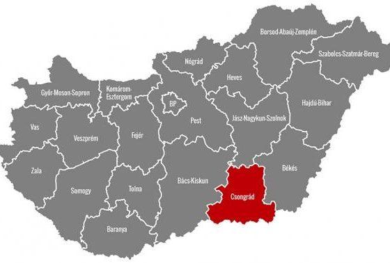 Weboldal készítés Szeged: segíthet a profi csapat
