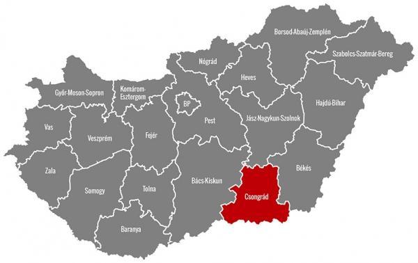 weboldal készítés Szeged